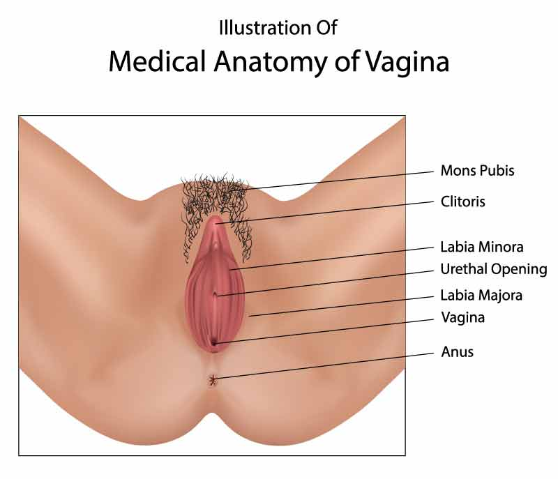 Nonsurgical-Vaginal-Rejuvenation-2